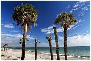 Coastal South Carolina Usa Charleston Hilton Head